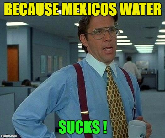 That Would Be Great Meme | BECAUSE MEXICOS WATER SUCKS ! | image tagged in memes,that would be great | made w/ Imgflip meme maker