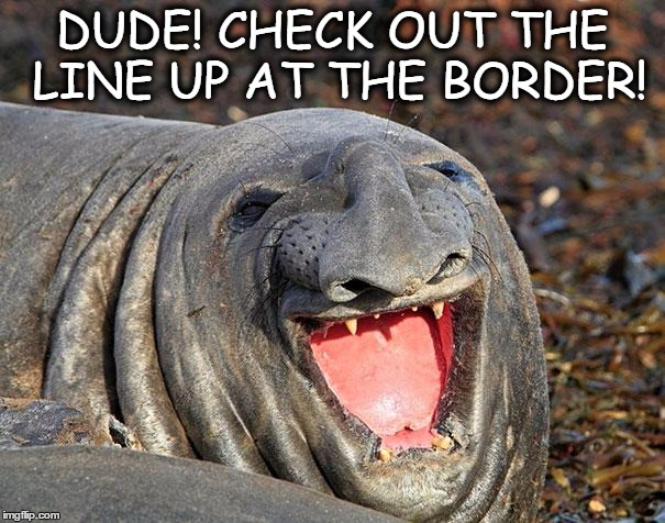 DUDE! CHECK OUT THE LINE UP AT THE BORDER! | image tagged in border,funny memes,wow | made w/ Imgflip meme maker