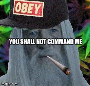 gandalf obey cap | YOU SHALL NOT COMMAND ME | image tagged in gandalf obey cap | made w/ Imgflip meme maker