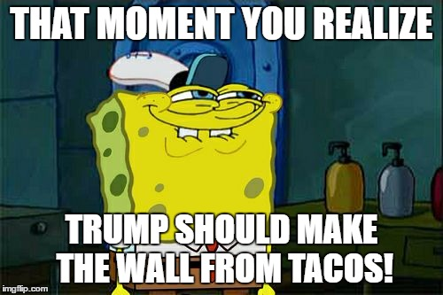 Not Hating just thought it was funny. |  THAT MOMENT YOU REALIZE; TRUMP SHOULD MAKE THE WALL FROM TACOS! | image tagged in memes,dont you squidward,build a wall,tacos | made w/ Imgflip meme maker