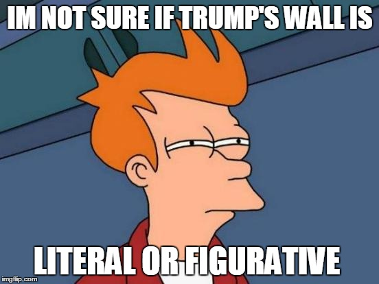 I wonder what he would say if I asked him... | IM NOT SURE IF TRUMP'S WALL IS LITERAL OR FIGURATIVE | image tagged in memes,futurama fry | made w/ Imgflip meme maker