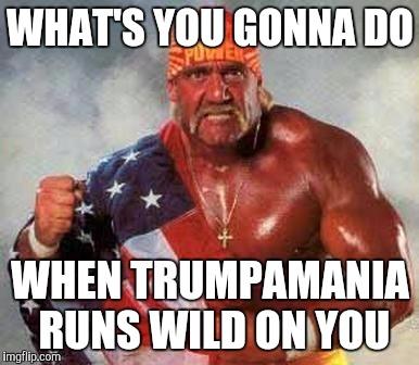 Hulk Hogan Memes Gifs Imgflip