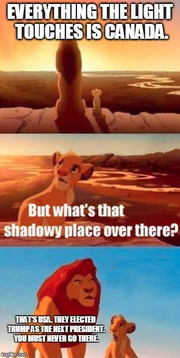 Simba Shadowy Place Meme | EVERYTHING THE LIGHT TOUCHES IS CANADA. THAT'S USA. THEY ELECTED TRUMP AS THE NEXT PRESIDENT. YOU MUST NEVER GO THERE. | image tagged in memes,simba shadowy place | made w/ Imgflip meme maker