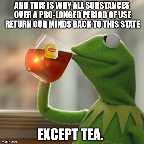 But Thats None Of My Business Meme | AND THIS IS WHY ALL SUBSTANCES OVER A PRO-LONGED PERIOD OF USE RETURN OUR MINDS BACK TO THIS STATE EXCEPT TEA. | image tagged in memes,but thats none of my business,kermit the frog | made w/ Imgflip meme maker