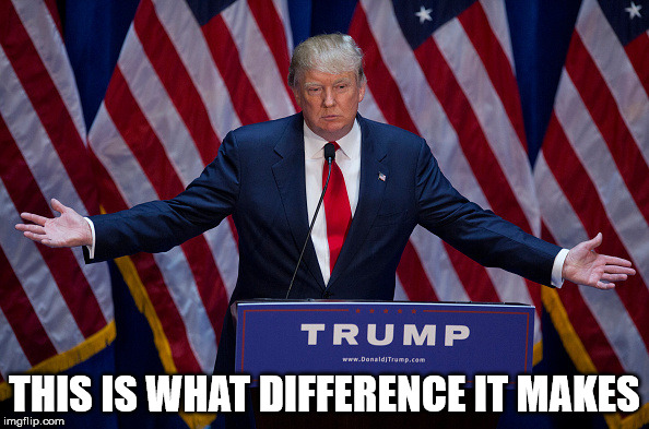 In case we forgot. | THIS IS WHAT DIFFERENCE IT MAKES | image tagged in donald trump | made w/ Imgflip meme maker