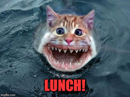 LUNCH! | made w/ Imgflip meme maker