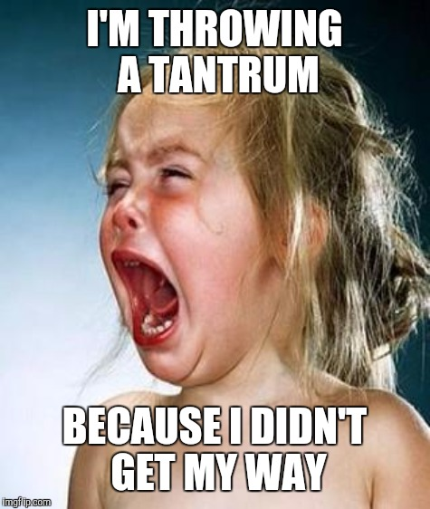 I'M THROWING A TANTRUM BECAUSE I DIDN'T GET MY WAY | made w/ Imgflip meme maker