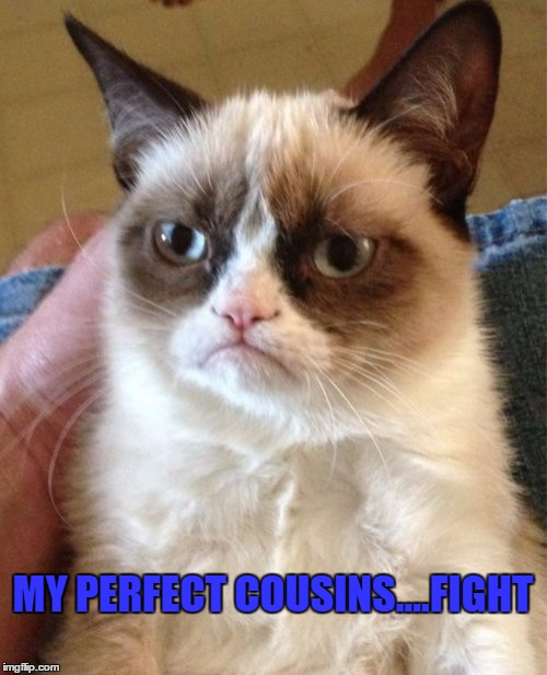 Grumpy Cat Meme | MY PERFECT COUSINS....FIGHT | image tagged in memes,grumpy cat | made w/ Imgflip meme maker