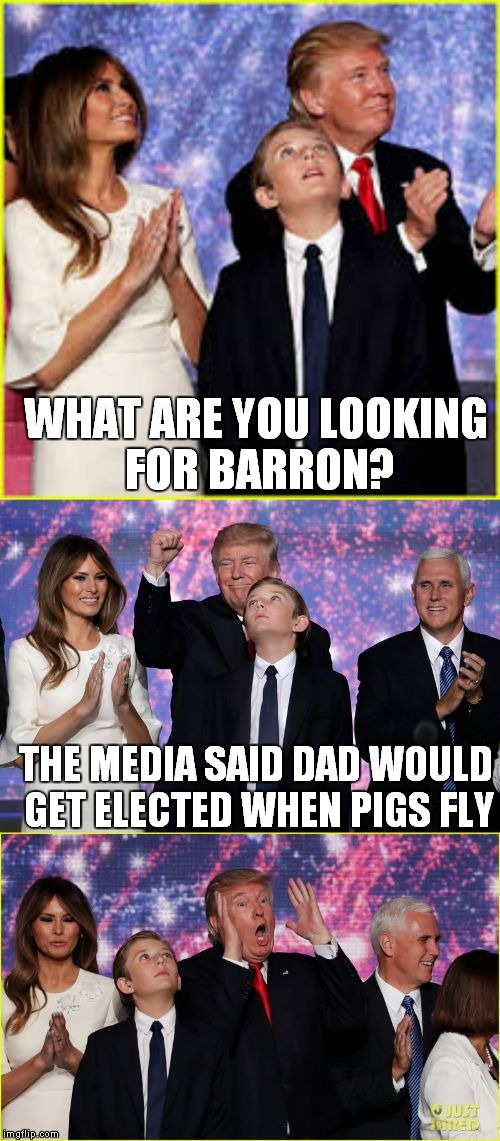 WHAT ARE YOU LOOKING FOR BARRON? THE MEDIA SAID DAD WOULD GET ELECTED WHEN PIGS FLY | image tagged in barron trump bad joke | made w/ Imgflip meme maker