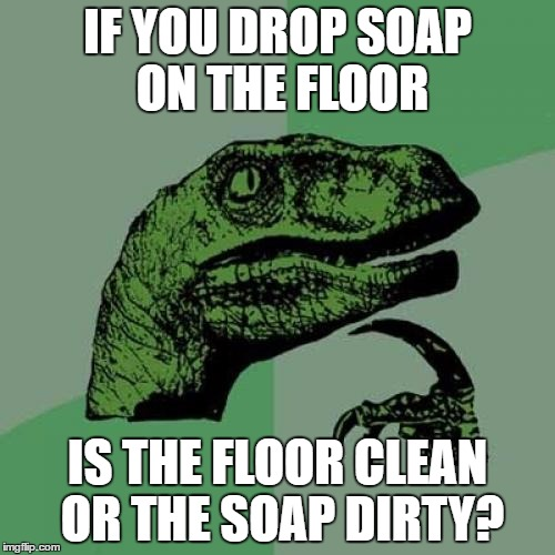 Philosoraptor Meme | IF YOU DROP SOAP ON THE FLOOR IS THE FLOOR CLEAN OR THE SOAP DIRTY? | image tagged in memes,philosoraptor | made w/ Imgflip meme maker