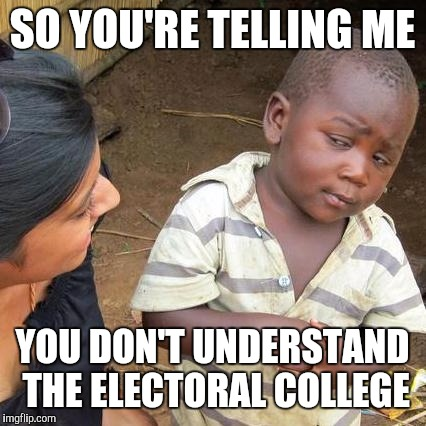 Third World Skeptical Kid Meme | SO YOU'RE TELLING ME YOU DON'T UNDERSTAND THE ELECTORAL COLLEGE | image tagged in memes,third world skeptical kid | made w/ Imgflip meme maker