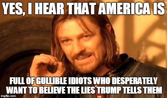 One Does Not Simply Meme | YES, I HEAR THAT AMERICA IS FULL OF GULLIBLE IDIOTS WHO DESPERATELY WANT TO BELIEVE THE LIES TRUMP TELLS THEM | image tagged in memes,one does not simply | made w/ Imgflip meme maker