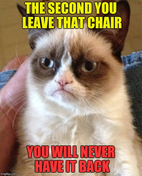 Grumpy Cat Meme | THE SECOND YOU LEAVE THAT CHAIR YOU WILL NEVER HAVE IT BACK | image tagged in memes,grumpy cat | made w/ Imgflip meme maker