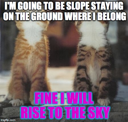 cats looking up | I'M GOING TO BE SLOPE STAYING ON THE GROUND WHERE I BELONG FINE I WILL RISE TO THE SKY | image tagged in cats looking up | made w/ Imgflip meme maker