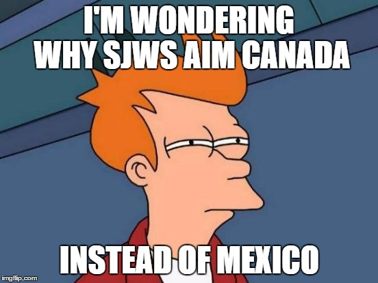 Complaining from the 1st world | I'M WONDERING WHY SJWS AIM CANADA INSTEAD OF MEXICO | image tagged in memes,futurama fry,election 2016,canada | made w/ Imgflip meme maker
