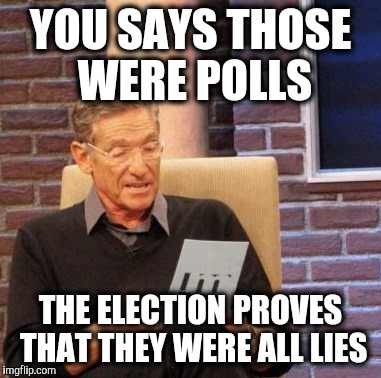Maury Lie Detector Meme | YOU SAYS THOSE WERE POLLS THE ELECTION PROVES THAT THEY WERE ALL LIES | image tagged in memes,maury lie detector | made w/ Imgflip meme maker