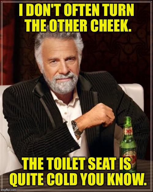 The Most Interesting Man In The World Meme | I DON'T OFTEN TURN THE OTHER CHEEK. THE TOILET SEAT IS QUITE COLD YOU KNOW. | image tagged in memes,the most interesting man in the world | made w/ Imgflip meme maker