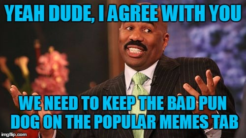 Steve Harvey Meme | YEAH DUDE, I AGREE WITH YOU WE NEED TO KEEP THE BAD PUN DOG ON THE POPULAR MEMES TAB | image tagged in memes,steve harvey | made w/ Imgflip meme maker
