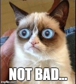 Grumpy Cat Shocked | NOT BAD... | image tagged in grumpy cat shocked | made w/ Imgflip meme maker