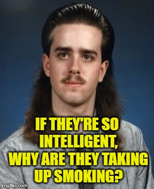 IF THEY'RE SO INTELLIGENT, WHY ARE THEY TAKING UP SMOKING? | made w/ Imgflip meme maker