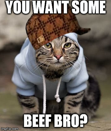 Who wants beef | YOU WANT SOME BEEF BRO? | image tagged in where's the beef | made w/ Imgflip meme maker