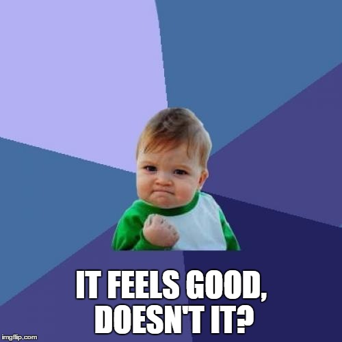 Success Kid Meme | IT FEELS GOOD, DOESN'T IT? | image tagged in memes,success kid | made w/ Imgflip meme maker