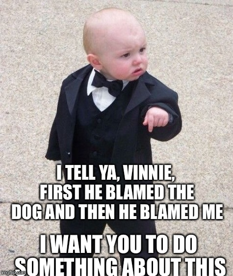 I TELL YA, VINNIE, FIRST HE BLAMED THE DOG AND THEN HE BLAMED ME I WANT YOU TO DO SOMETHING ABOUT THIS | made w/ Imgflip meme maker