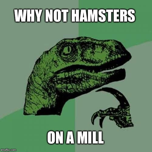 Philosoraptor Meme | WHY NOT HAMSTERS ON A MILL | image tagged in memes,philosoraptor | made w/ Imgflip meme maker