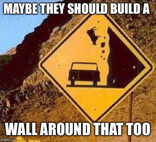 Falling Cows |  MAYBE THEY SHOULD BUILD A; WALL AROUND THAT TOO | image tagged in falling cows | made w/ Imgflip meme maker