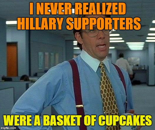 That Would Be Great Meme | I NEVER REALIZED HILLARY SUPPORTERS WERE A BASKET OF CUPCAKES | image tagged in memes,that would be great | made w/ Imgflip meme maker