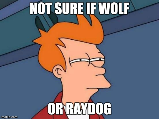 Futurama Fry Meme | NOT SURE IF WOLF OR RAYDOG | image tagged in memes,futurama fry | made w/ Imgflip meme maker
