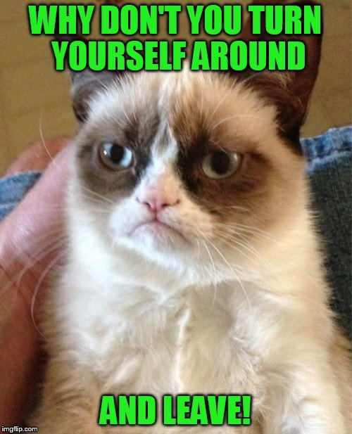 Grumpy Cat Meme | WHY DON'T YOU TURN YOURSELF AROUND AND LEAVE! | image tagged in memes,grumpy cat | made w/ Imgflip meme maker