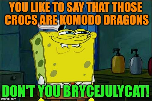 Another Komodo Dragon Meme :D - Use The Username Weekend! | YOU LIKE TO SAY THAT THOSE CROCS ARE KOMODO DRAGONS DON'T YOU BRYCEJULYCAT! | image tagged in memes,dont you squidward,funny,use someones username in your meme,use the username weekend | made w/ Imgflip meme maker