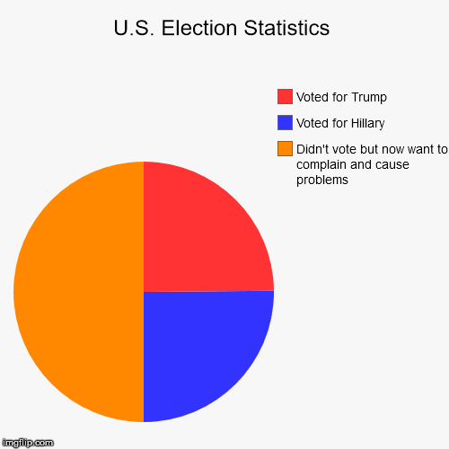 U.S. Election Statistics | Didn't vote but now want to complain and cause problems, Voted for Hillary, Voted for Trump | image tagged in pie charts,election 2016 | made w/ Imgflip pie chart maker