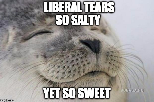 Happy Seal | LIBERAL TEARS SO SALTY YET SO SWEET | image tagged in happy seal | made w/ Imgflip meme maker