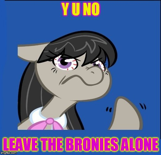 Y U NO LEAVE THE BRONIES ALONE | made w/ Imgflip meme maker