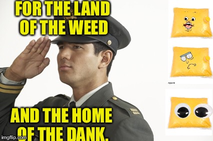 FOR THE LAND OF THE WEED AND THE HOME OF THE DANK. | made w/ Imgflip meme maker