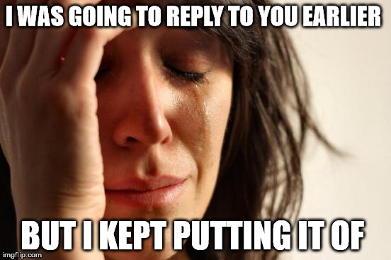 First World Problems Meme | I WAS GOING TO REPLY TO YOU EARLIER BUT I KEPT PUTTING IT OF | image tagged in memes,first world problems | made w/ Imgflip meme maker