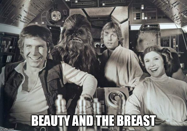 laughing | BEAUTY AND THE BREAST | image tagged in laughing | made w/ Imgflip meme maker