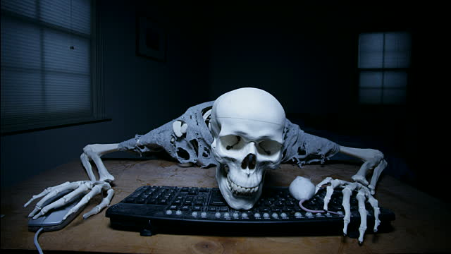 Image result for skeleton at computer