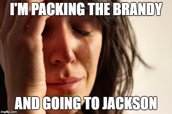 First World Problems Meme | I'M PACKING THE BRANDY AND GOING TO JACKSON | image tagged in memes,first world problems | made w/ Imgflip meme maker