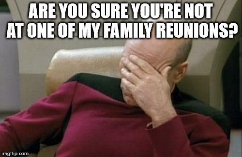 Captain Picard Facepalm Meme | ARE YOU SURE YOU'RE NOT AT ONE OF MY FAMILY REUNIONS? | image tagged in memes,captain picard facepalm | made w/ Imgflip meme maker