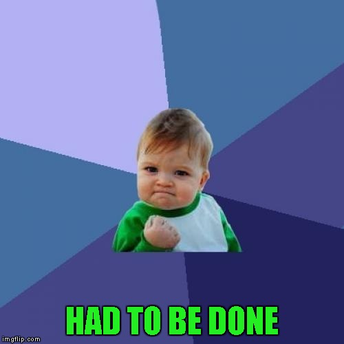Success Kid Meme | HAD TO BE DONE | image tagged in memes,success kid | made w/ Imgflip meme maker