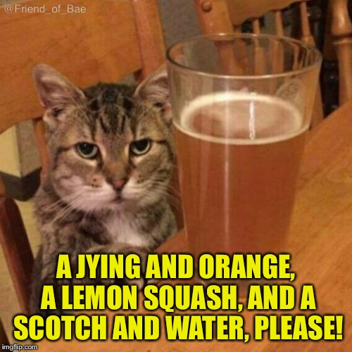Angry Drunk Cat | A JYING AND ORANGE, A LEMON SQUASH, AND A SCOTCH AND WATER, PLEASE! | image tagged in angry drunk cat,memes | made w/ Imgflip meme maker