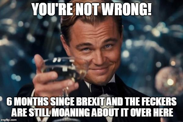 Leonardo Dicaprio Cheers Meme | YOU'RE NOT WRONG! 6 MONTHS SINCE BREXIT AND THE FECKERS ARE STILL MOANING ABOUT IT OVER HERE | image tagged in memes,leonardo dicaprio cheers | made w/ Imgflip meme maker