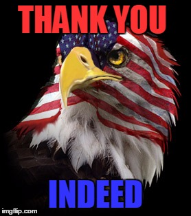 Flag Faced American Eagle | THANK YOU INDEED | image tagged in flag faced american eagle | made w/ Imgflip meme maker