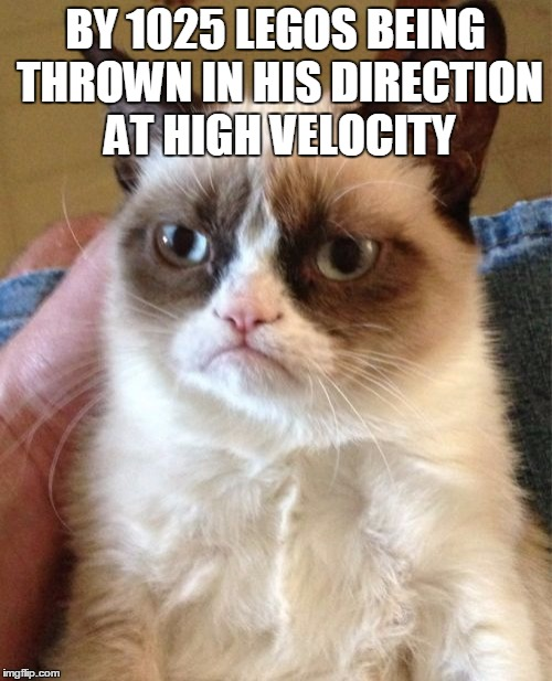 Grumpy Cat Meme | BY 1025 LEGOS BEING THROWN IN HIS DIRECTION AT HIGH VELOCITY | image tagged in memes,grumpy cat | made w/ Imgflip meme maker