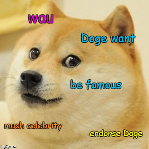 Doge Meme | wau Doge want be famous much celebrity endorse Doge | image tagged in memes,doge | made w/ Imgflip meme maker