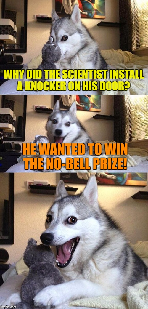Bad Pun Dog Meme | WHY DID THE SCIENTIST INSTALL A KNOCKER ON HIS DOOR? HE WANTED TO WIN THE NO-BELL PRIZE! | image tagged in memes,bad pun dog | made w/ Imgflip meme maker