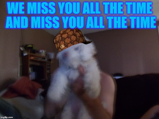 sad | WE MISS YOU ALL THE TIME AND MISS YOU ALL THE TIME | image tagged in sad | made w/ Imgflip meme maker